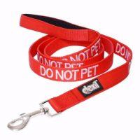 do not pet lead