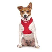 do not pet harness